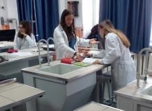 Спільний урок хімії в ліцеї Анни Київської